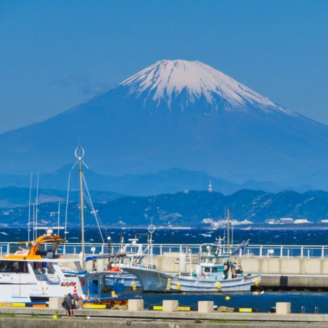 Two Days in Kanagawa Prefecture